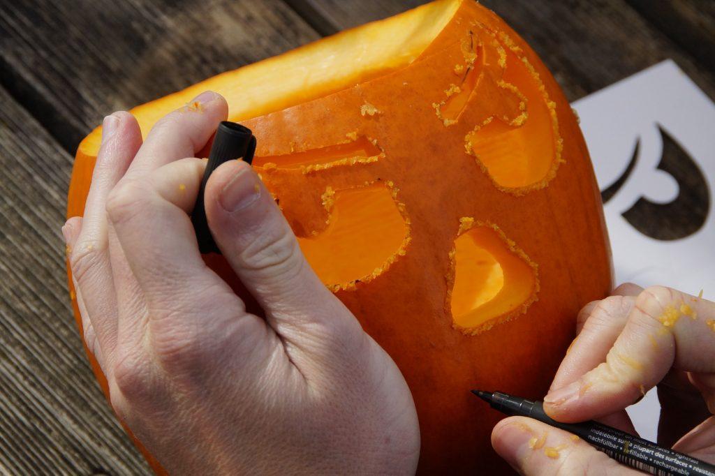 pumpkin-1004973_1920